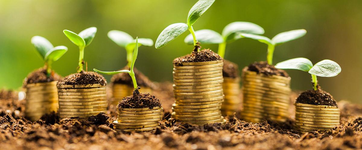 green economy-02